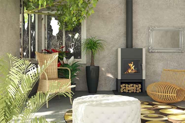 indoor living room plants