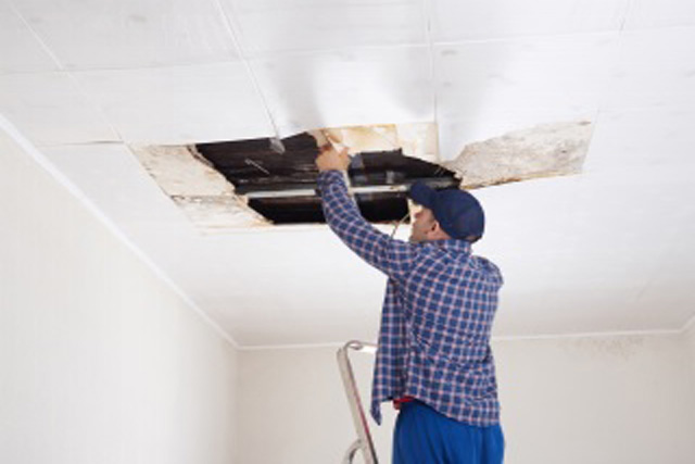 Your Drywall Got Wet — Now What?