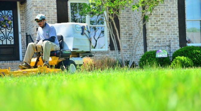 Seasonal Lawn Care Guide