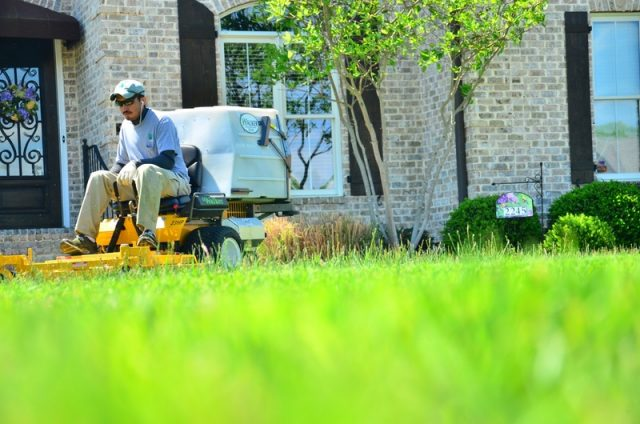 The 4-Season Lawn Care Calendar